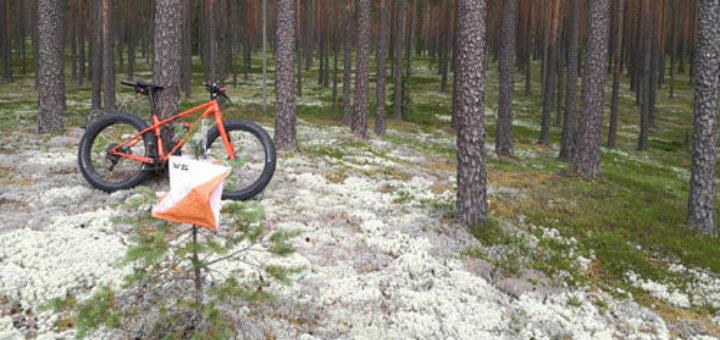 SM2018, Rogaining, Jämi