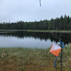 5. Vuokatti-rogaining @ Sotkamon alueella | Sotkamo | Finland