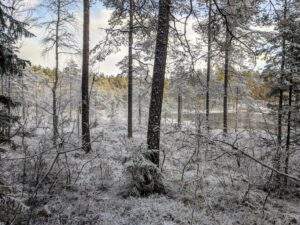 Nuuksion Huurteinen 2021 @ Luukki, Espoo